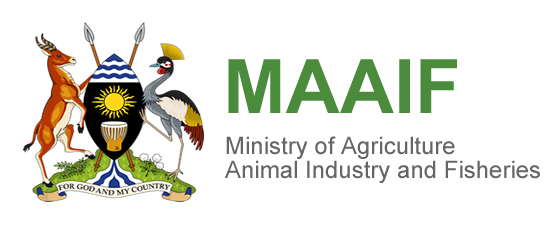 MAAIF issues guidelines for controlling animal movements during quarantine