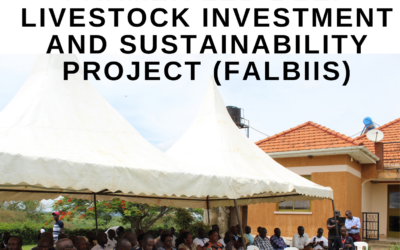 Cattle farmer dialogue, mobilization, and sensitization for E.U FALBIIS project