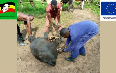 Controlling animal diseases is a continuous effort